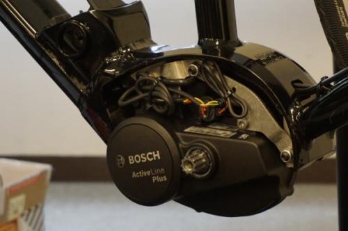 Bosch18.jpg