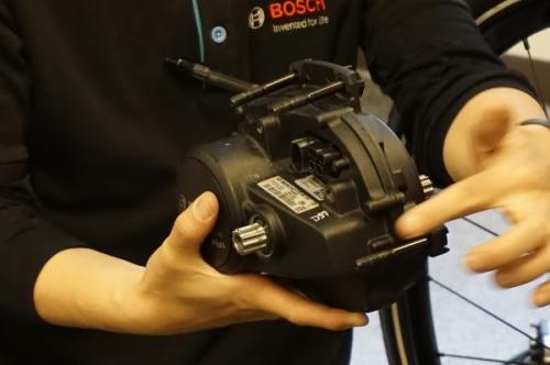 Bosch21.jpg