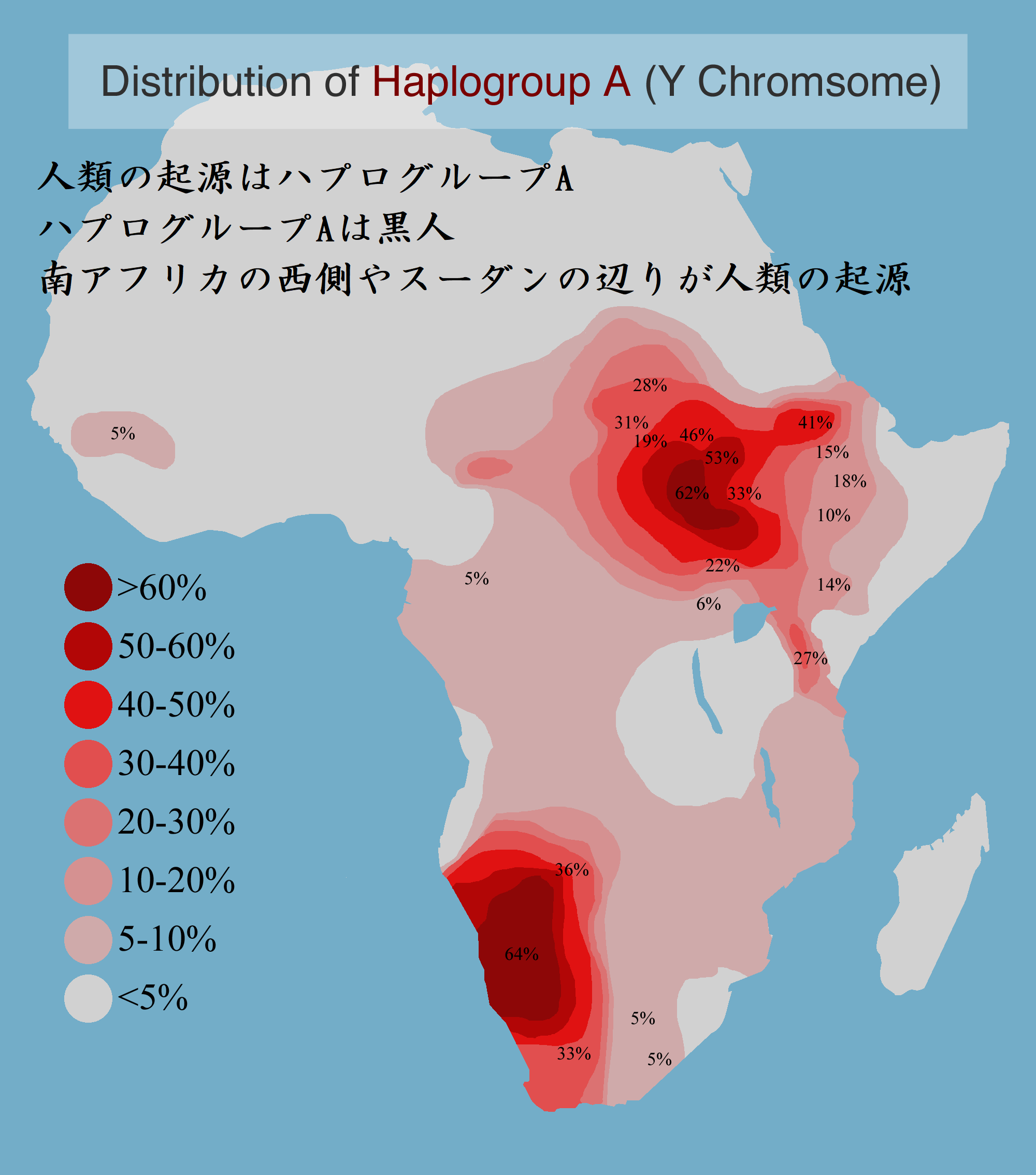ハプログループA 黒人が人類の起源 文字入り Distribution_of_Y-Chromosome_Haplogroup_A_in_Africa