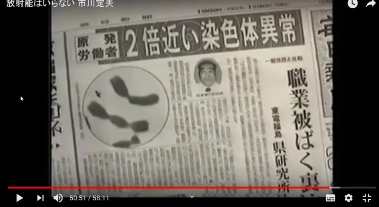 新聞 染色体