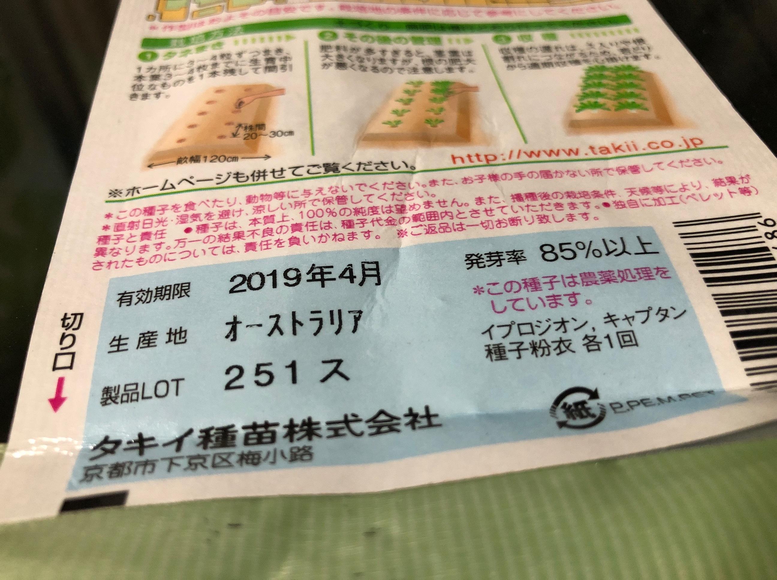 2018/10/16 発芽苗 サラダ菜