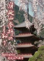 2018-12-10-8 枝垂桜