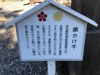 2018-12-1-10 矢奈比賣神社