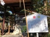 2018-12-1-11 矢奈比賣神社