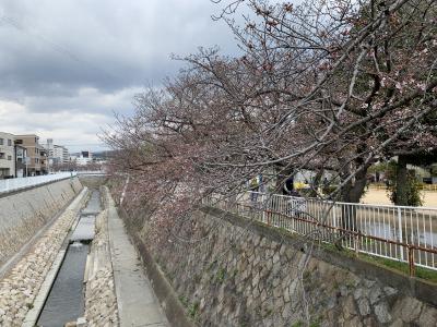 妙法寺公園