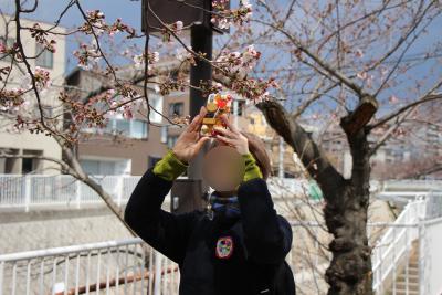 妙法寺公園2