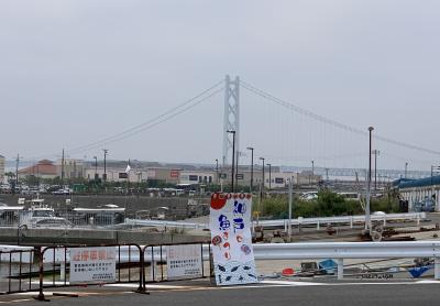 神戸魚まつり
