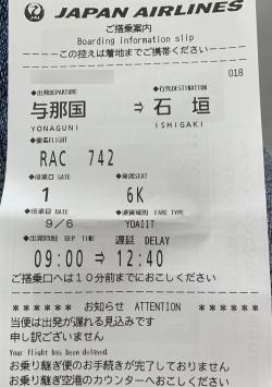 遅延航空券
