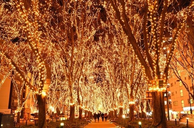 今日の仙台市内(12/15)SENDAI光のページェントが始まりました