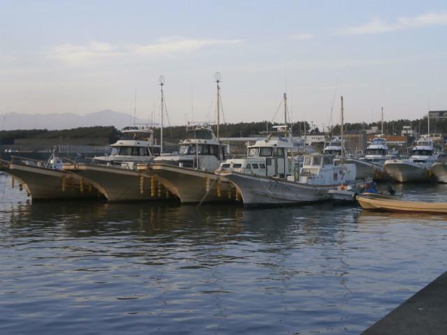 茅ヶ崎漁港2