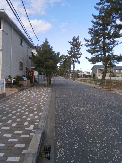 鶴嶺神社4