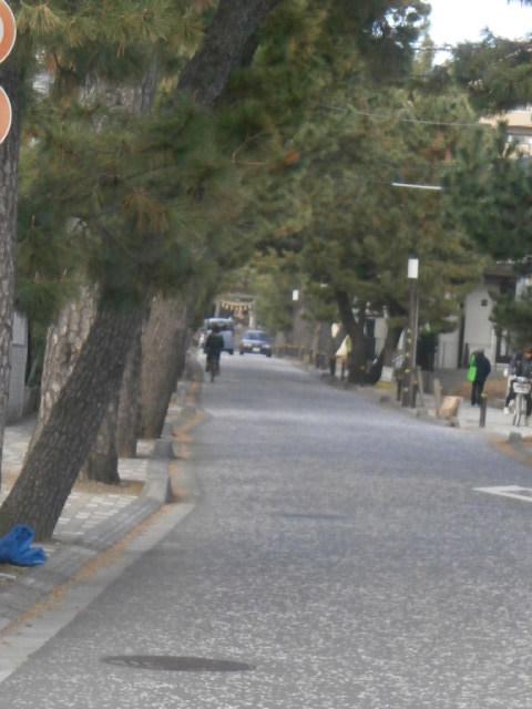 鶴嶺神社6