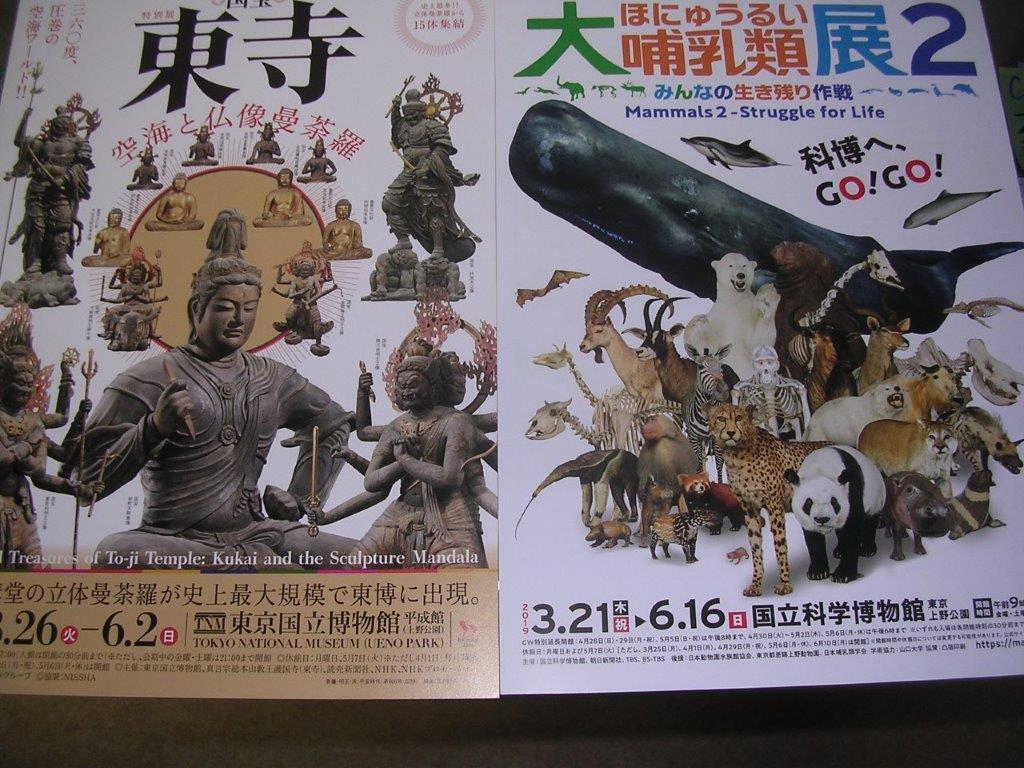 国宝東寺、大哺乳類展