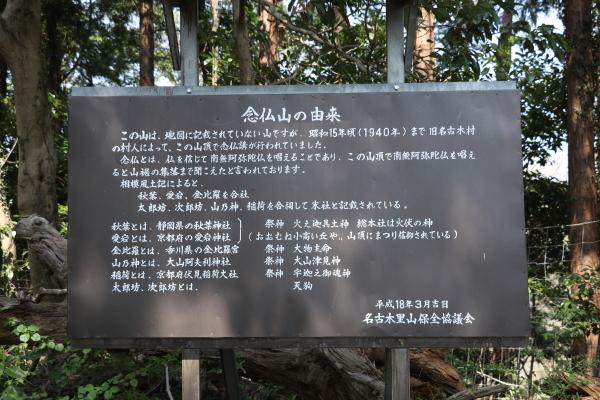 20190406Koboyama034.jpg