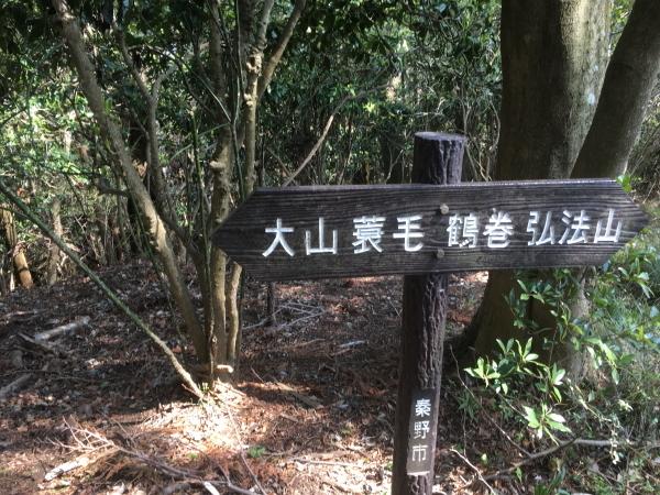 20190406Koboyama046.jpg