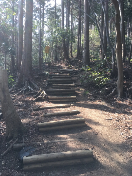 高取山への階段