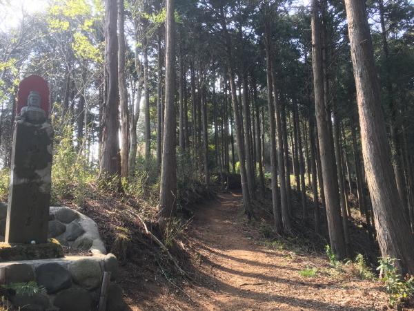 20190406Koboyama063.jpg