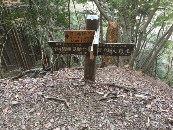 1606山頂への道標