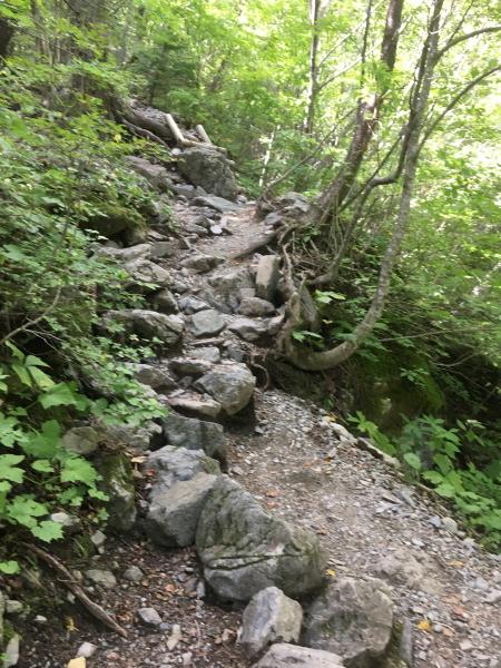 1149登山道
