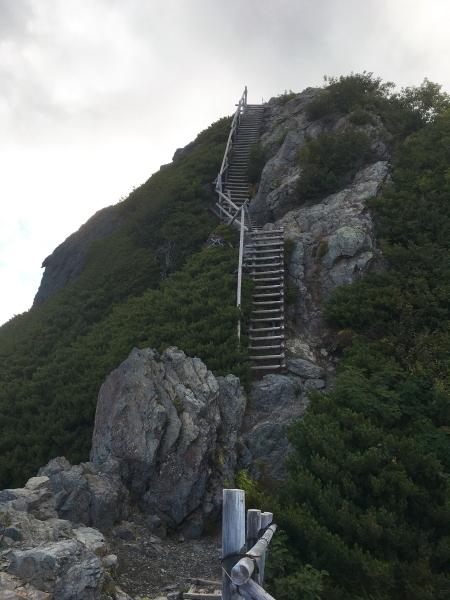 1708丸太のはしご