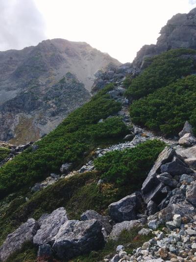 1341 登山道