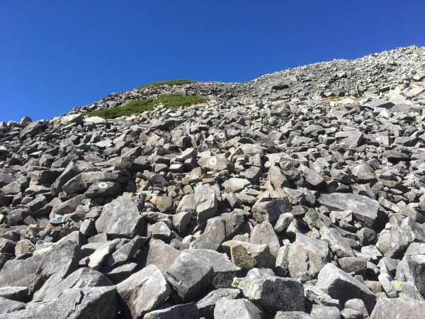1001岩ゴロゴロ