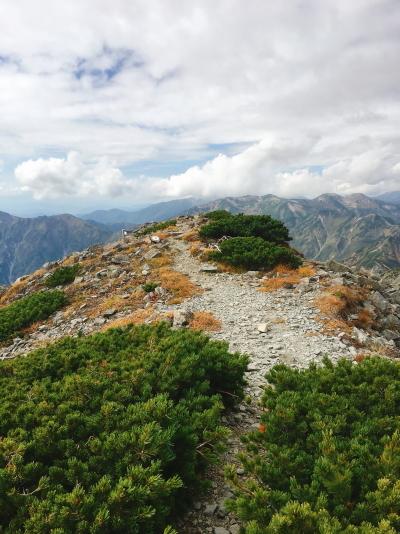 1328 ハイマツ稜線