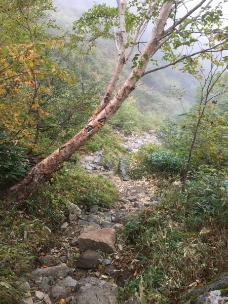 0610登山道