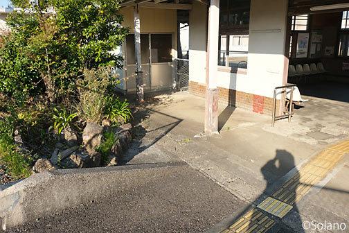 紀勢本線・阿田和駅構内の枯池と撮影に勤しむ私の影