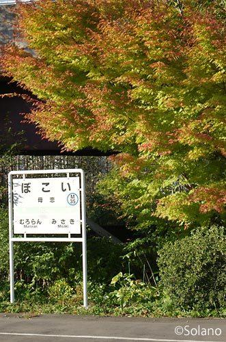 JR北海道・室蘭本線、母恋駅。駅名標と秋に色づく紅葉