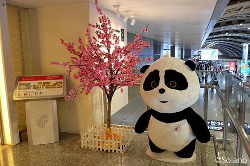 成都双流国際空港、中国国際航空・国内線ラウンジのパンダ
