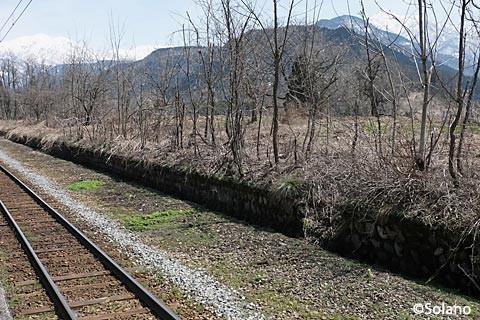富山地鉄・立山線・千垣駅、草に埋もれた廃ホーム