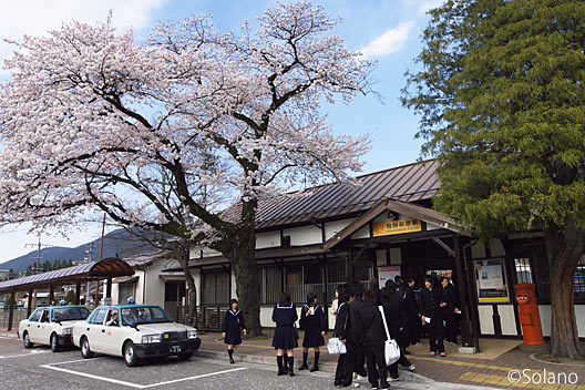 桜咲く飛騨萩原駅、木造駅舎と高校生の行列