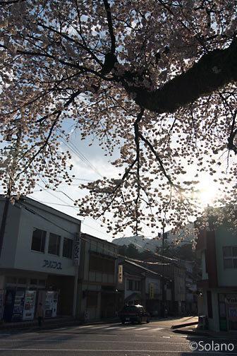 飛騨萩原駅の桜と夕影落ちる駅前通り