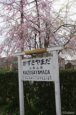 小湊鉄道・上総山田駅、レトロな駅名標と枝垂桜