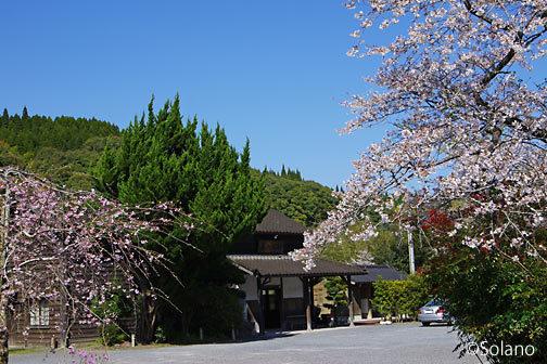 嘉例川駅、駅前の桜と木造駅舎