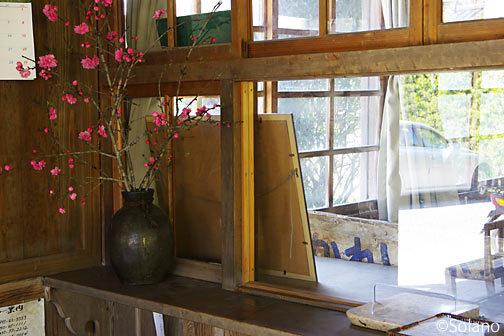 肥薩線・嘉例川駅、窓口跡に生けられた桜の木