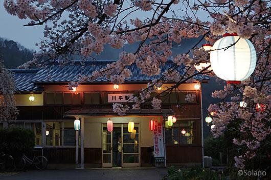 三江線・川平駅、夜の帳が下りる頃、桜の提灯がともった