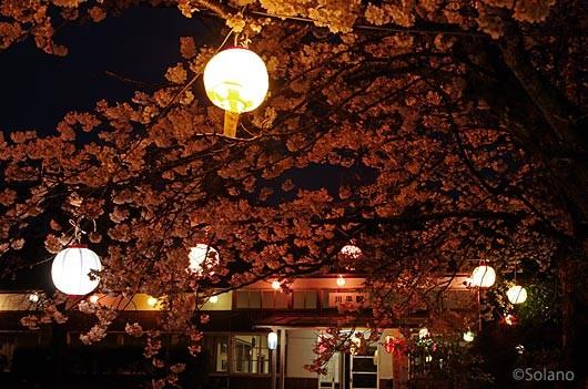 三江線・川平駅、木造駅舎と夜桜風景。島根県江津市。