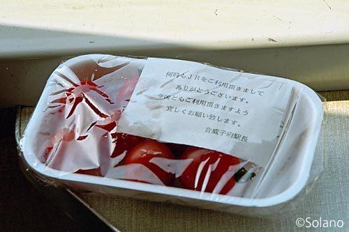 JR北海道・宗谷本線、音威子府駅育ちのプチトマト