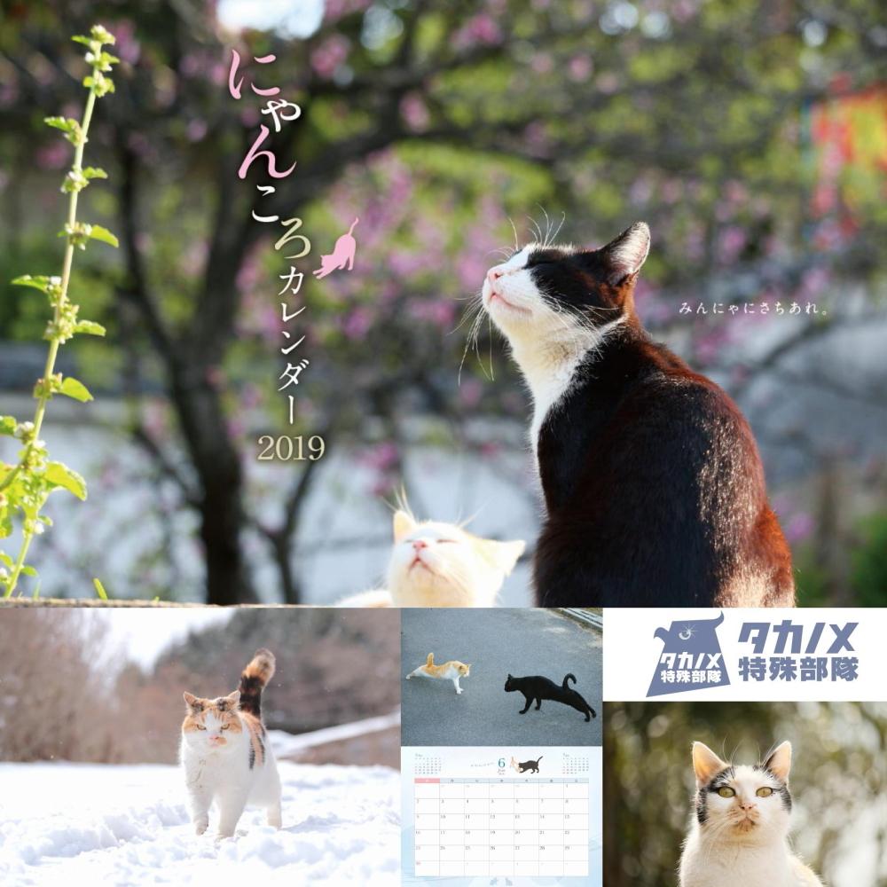 takanometokushubutai.jpg