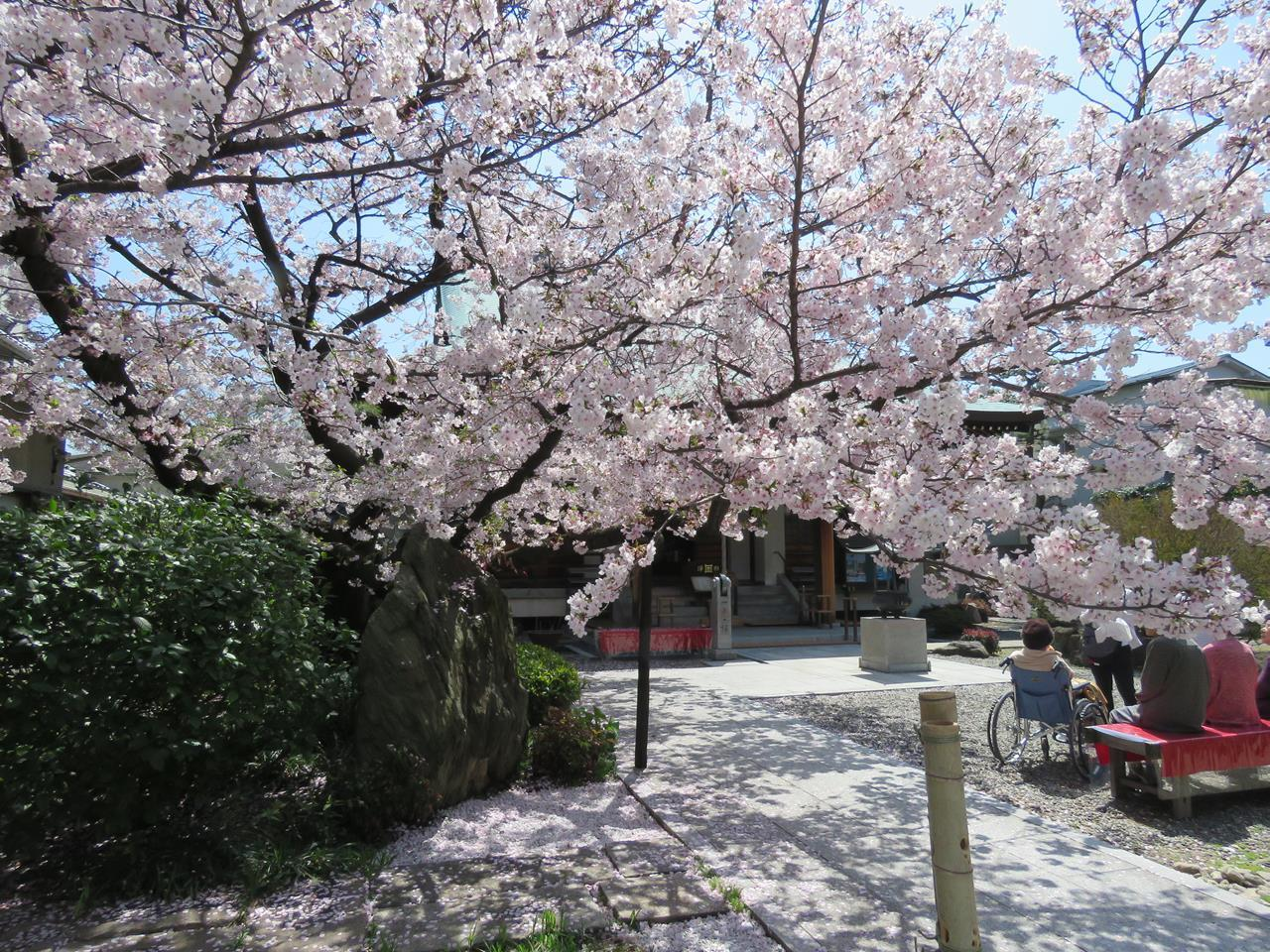 s-妙法寺