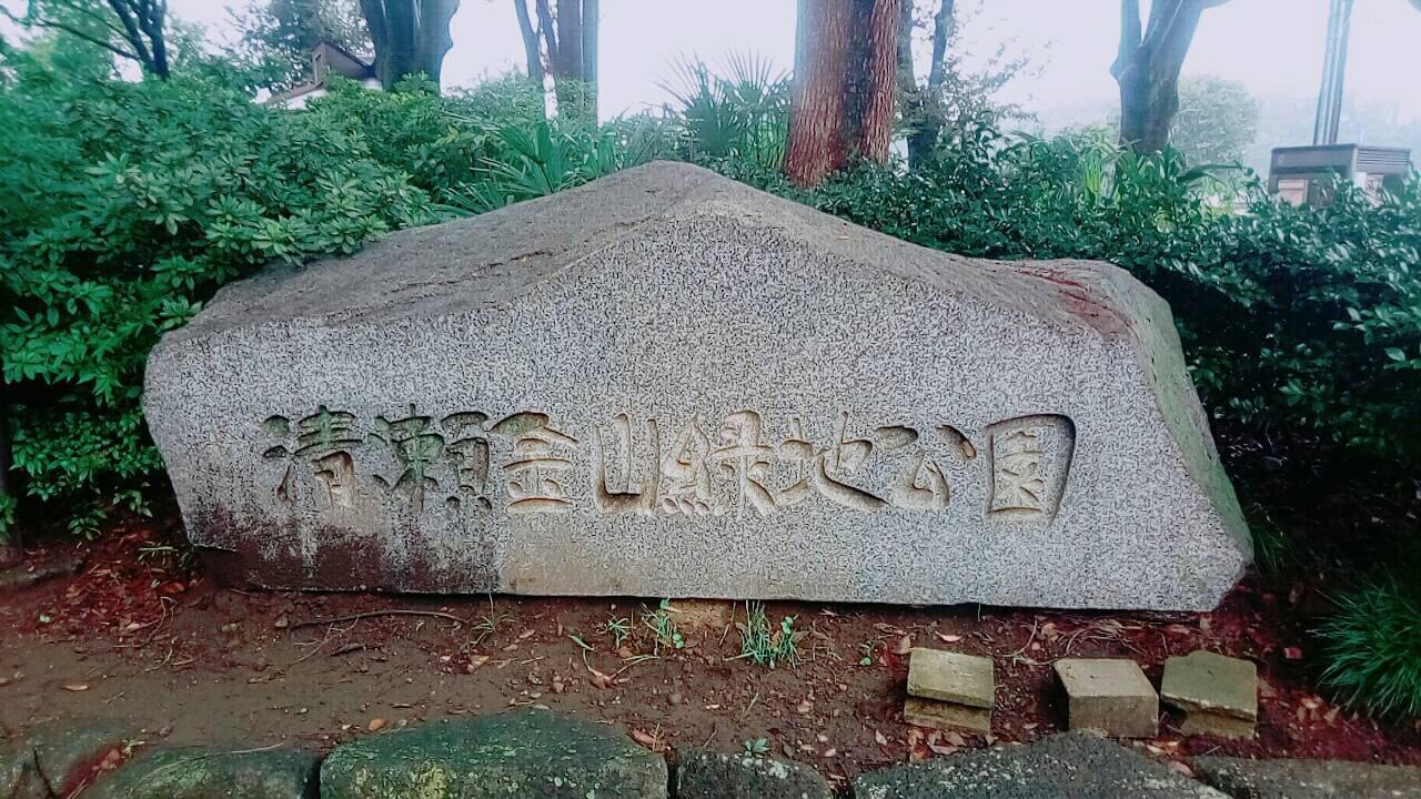 カレー麻雀(清瀬金山緑地公園)