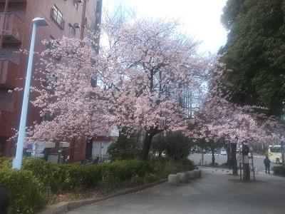 川原様ブログ写真1
