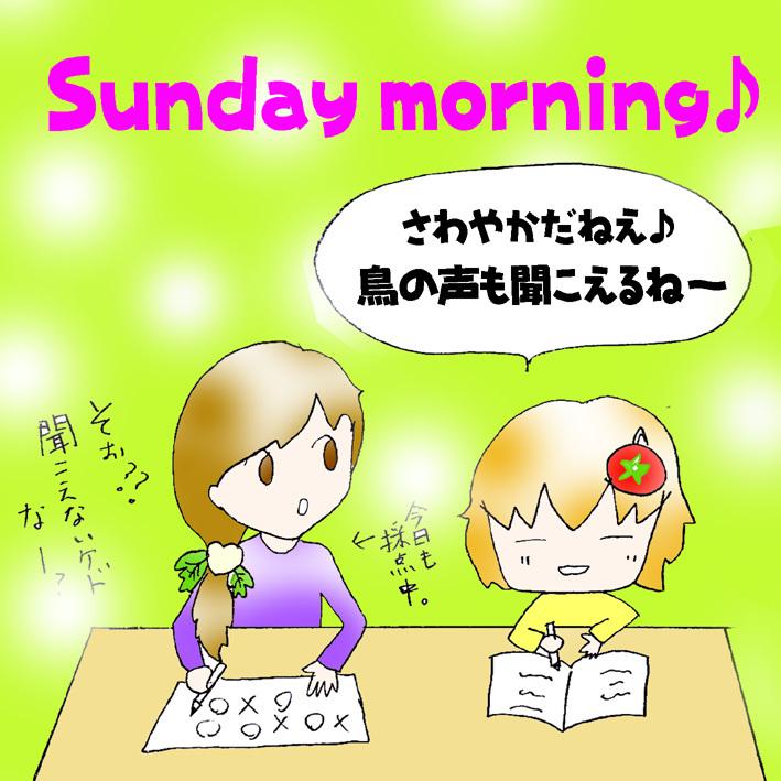 日曜の朝1