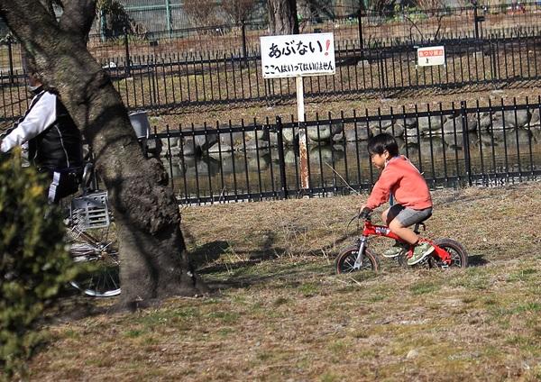 no017自転車と子供