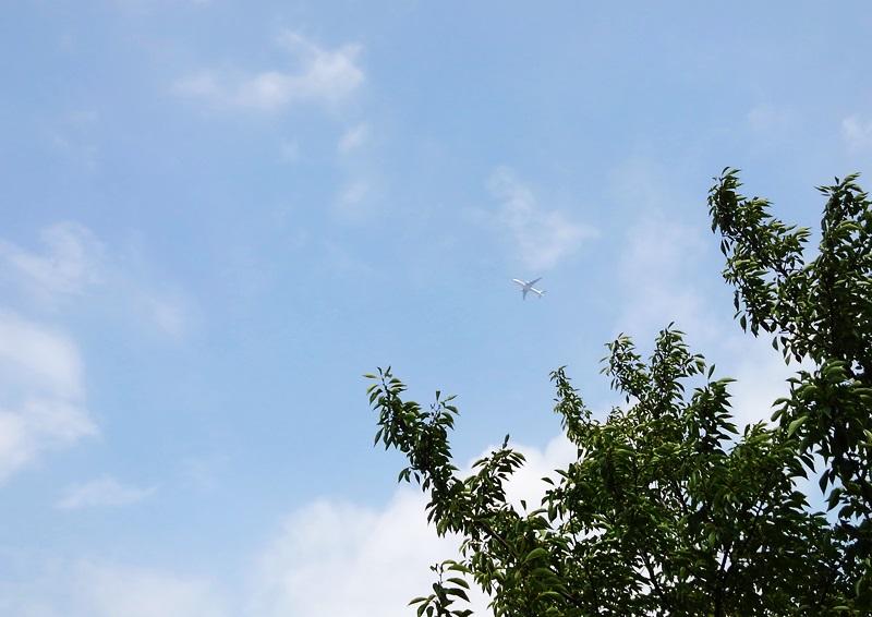 no018飛行機