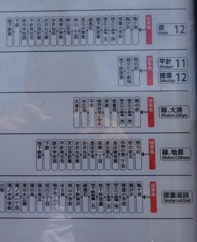 DSC02546.jpg