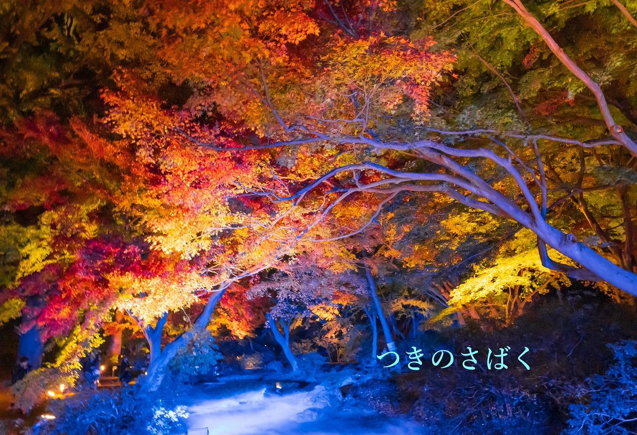 DSC00089fukei7141_1.jpg