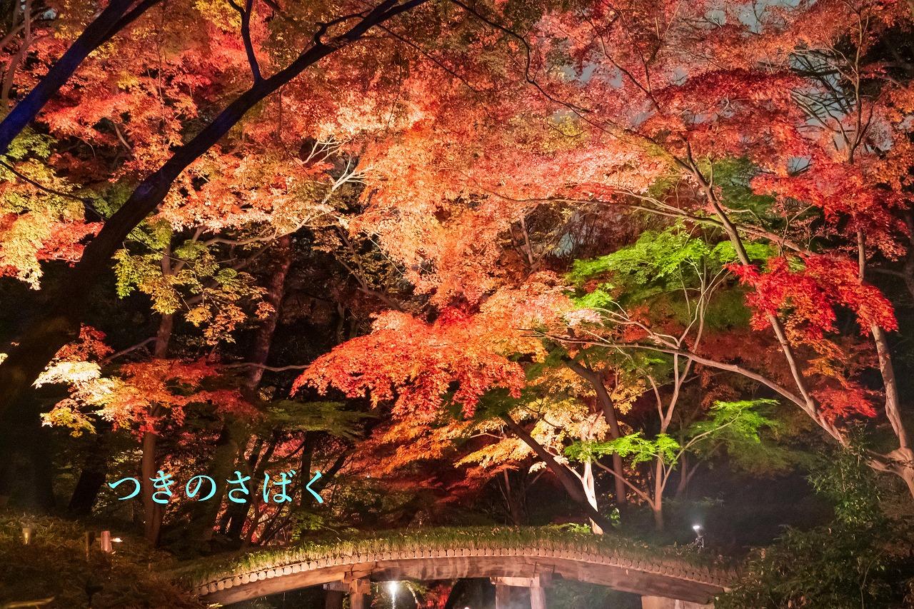 DSC00248fukei3127_1.jpg